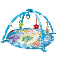 baby play mat - winfun polar gym